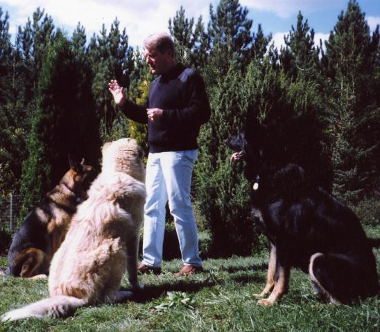 Kerry_and_dogs_2.jpg